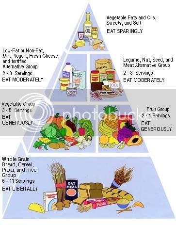 veg-pyramid.jpg?t=1185340309