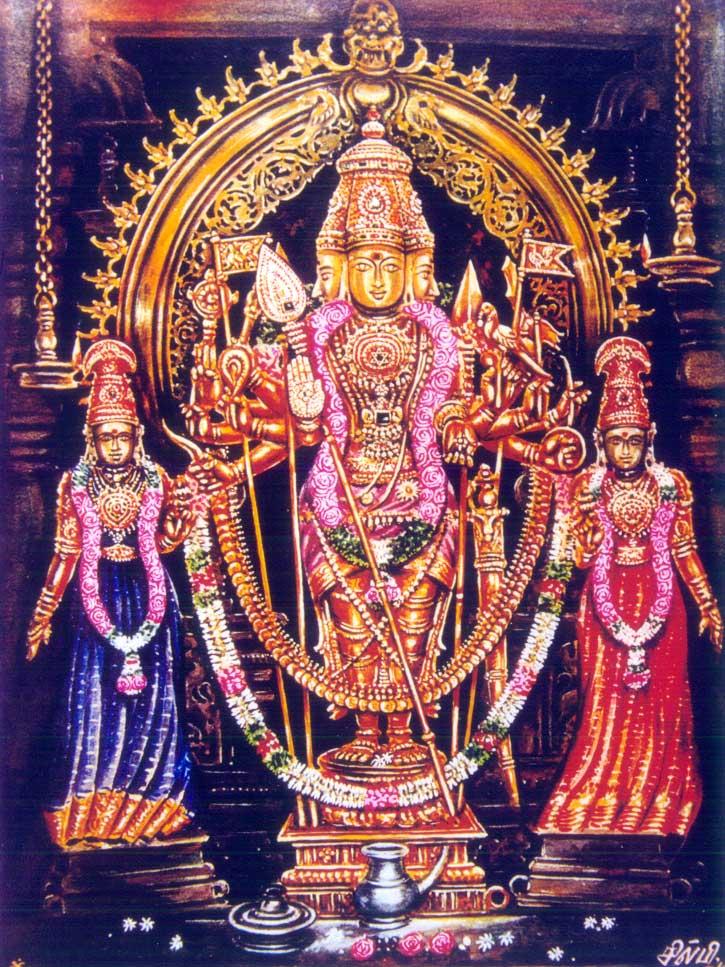 TChendoorShanmugar MURUGAN