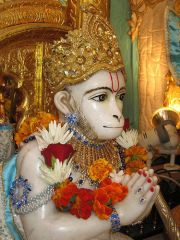 Pictures of Lord Hanuman