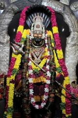 Pictures of Goddess Pratyangira