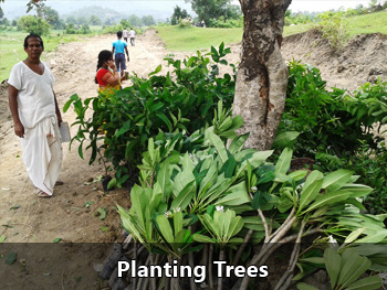 Planting Trees