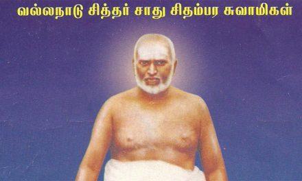 Siddhas of South India: Sadhu Chidambara Swamigal
