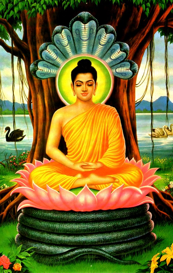 images of lord mahavira