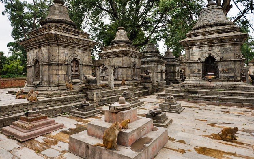 Pashupatinath Templo 3
