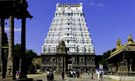 Athi Varadaraja – The Lord Who Gives Darshana Once in 40 Years